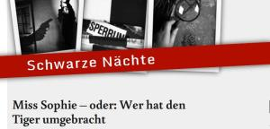 Schwarze Nächte - Michael Friederici